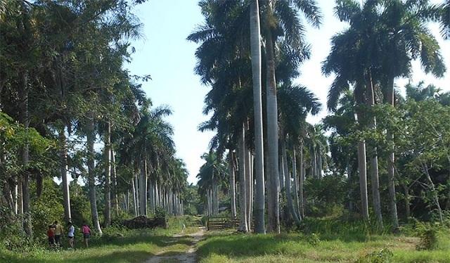 Ecoturism in Mayabeque