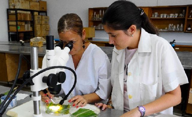 Desarrollo de bioproductos y nutrientes para las plantas en el Centro Nacional de Ciencias Agrícolas.