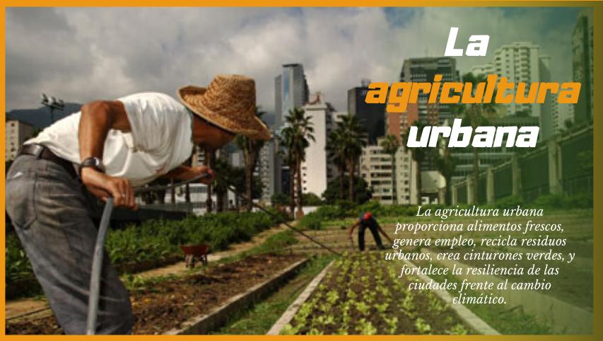 Agricultura Urbana, Suburbana y Familiar apuestan por el desarrollo local.