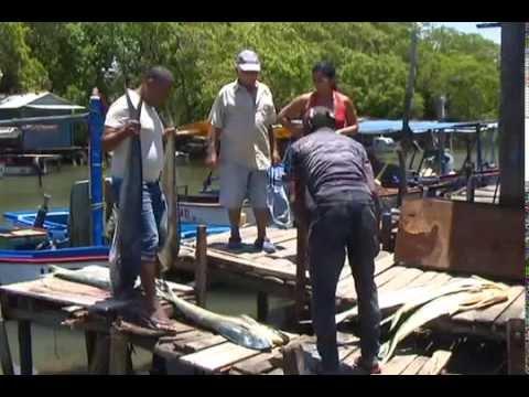 Rotipez unidad acuicola ubicada en Santa Cruz del Norte