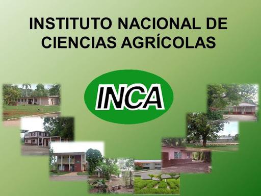 Productos biológicos de impacto en la agricultura en institución científica de Mayabeque (+ Audio)