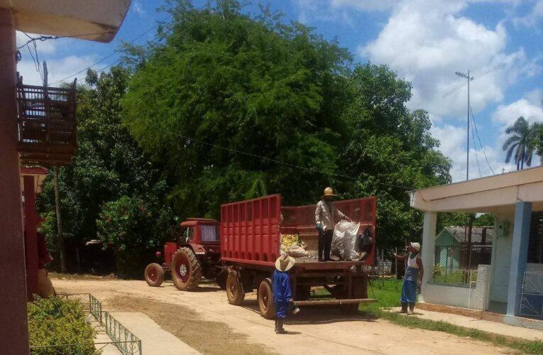 Trabajadores de servicios comunales en Batabanó a disposición del pueblo (+ Audio)