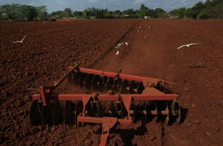 Capacitan a agricultores para exportar sus producciones