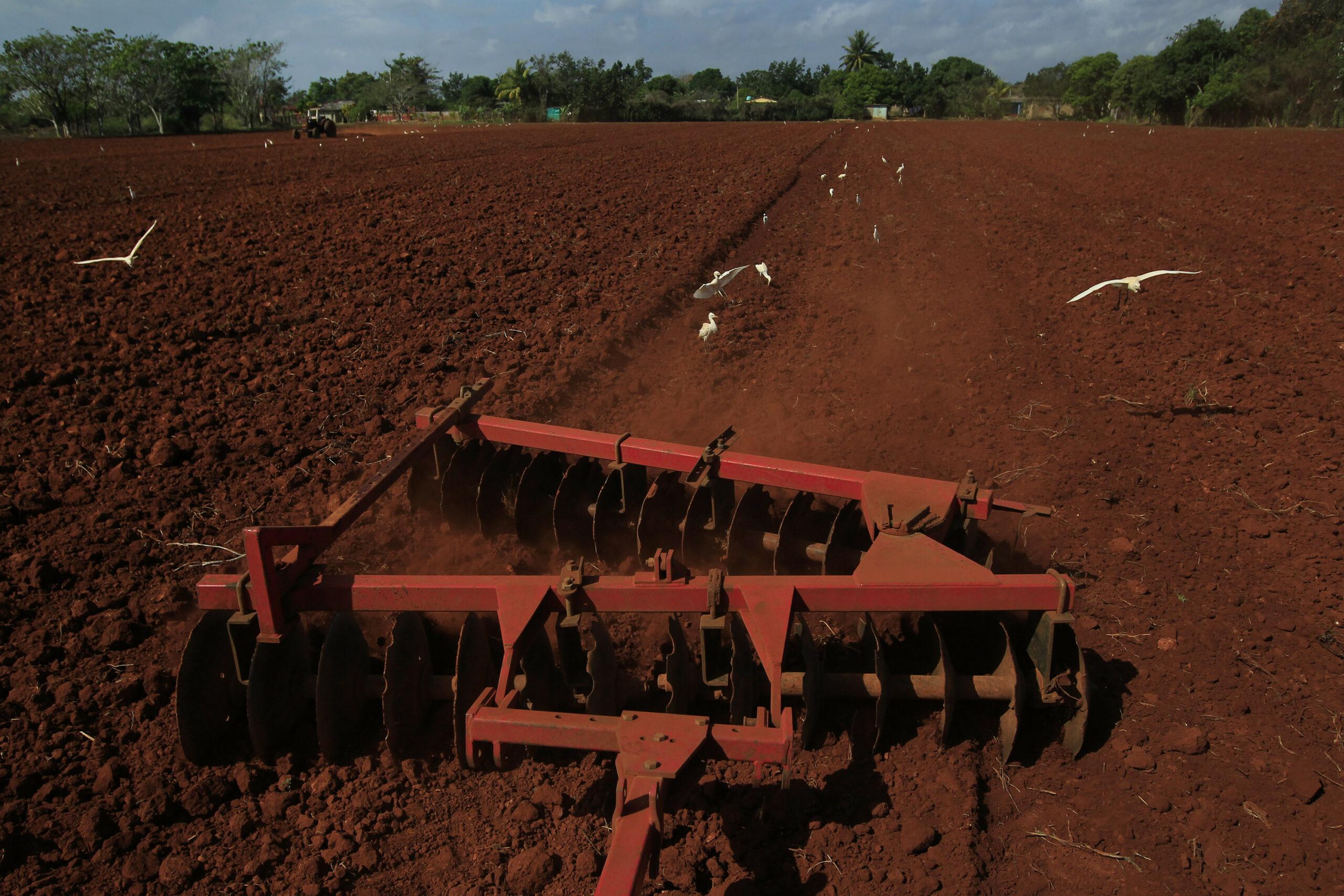 Capacitan a agricultores para exportar sus producciones.