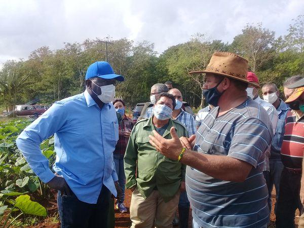 Vicepresidente cubano constata implementación de Tarea Ordenamiento en sector agroalimentario de Mayabeque