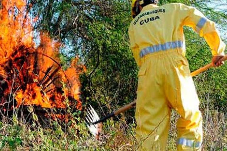 Guardabosques de Cuba reportan incremento de incendios forestales en Mayabeque.