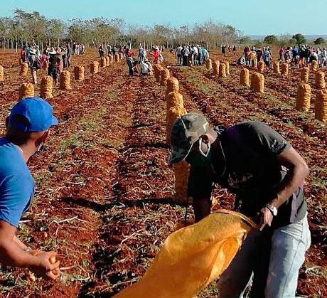 Una jornada para impulsar la producción de alimentos