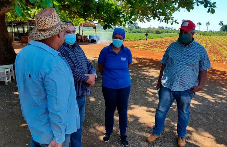 Legisladores valoraron en Quivicán y Güines entrega de alimentos a La Habana (Fotos)