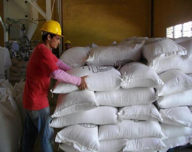 Amplía  Empresa del Grano capacidad de procesamiento del arroz (+Audio)