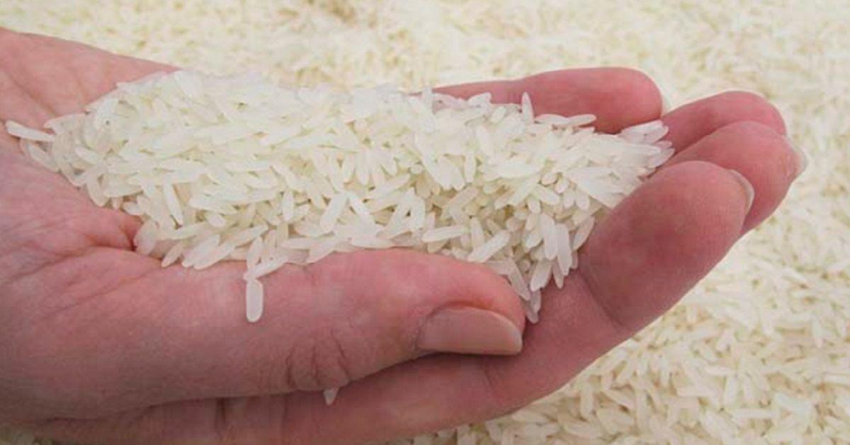Implementan estrategias económicas en Empresa Agroindustrial de Granos Mayabeque.