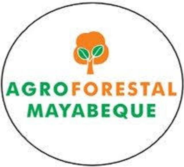 Cumplen planes productivos en Empresa Agroforestal Mayabeque.