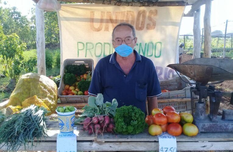 Priorizan cultivo de alimentos agroecológicos en cooperativa Humberto Hernández de Güines (Audio, Fotos, Galería)