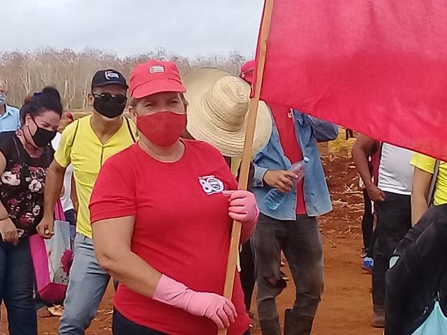 Sobrecumplen plan de producción en primer trimestre del año  trabajadores apícolas (Audio)