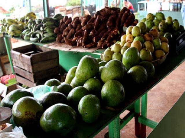 Cambios en la comercialización agropecuaria