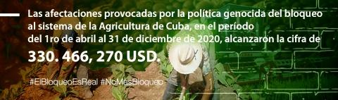 El bloqueo afecta también a la agricultura.