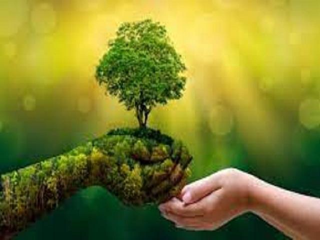Jornada de protección del medio ambiente.