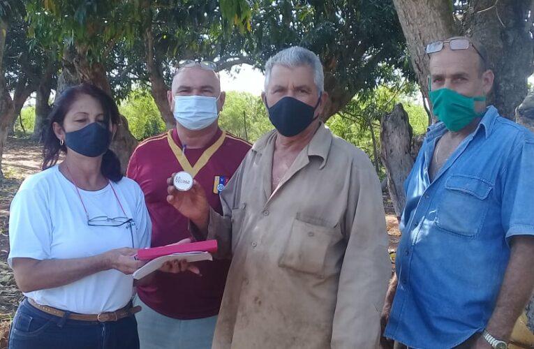 Distinguen a agricultores de Mayabeque con el Sello 60 aniversario de la organización campesina (+Audio)