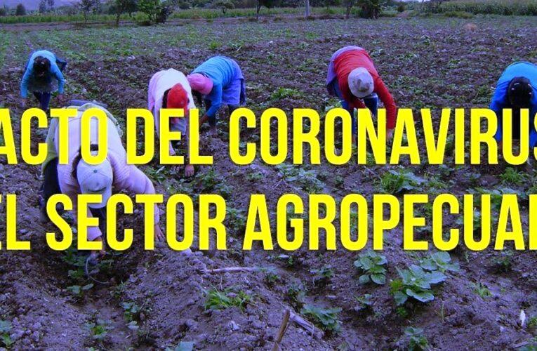 La agricultura y las implicaciones de la Covid-19