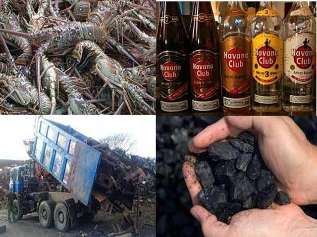 De las exportaciones de Mayabeque.
