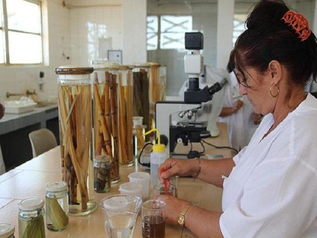 Fabricación de bioproductos una cartera en crecimiento